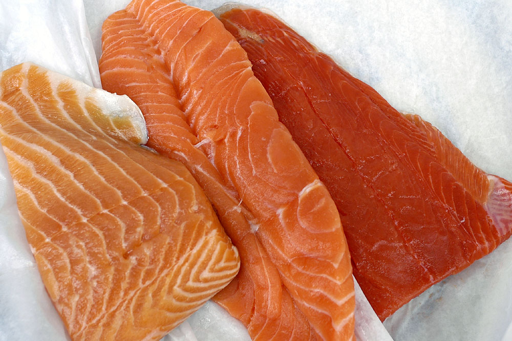 Salmon for Expensive fish to eat