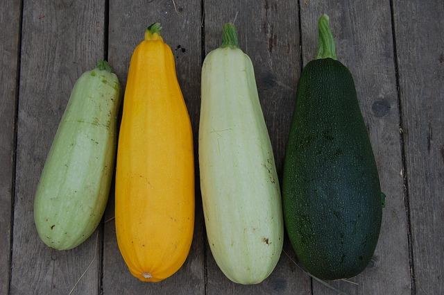 zucchini-1637435_640