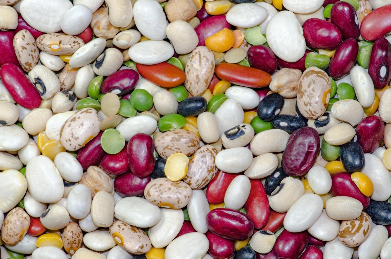 bean-1684304_1280