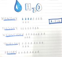 Water intake log example
