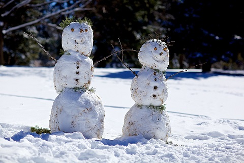 Two snowmen on a sunny day