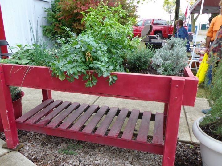 red wooden table with herbs growing on the top
